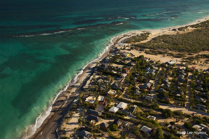 Ayuda a salvar la reserva marina más importante del Golfo de California: Cabo Pulmo
